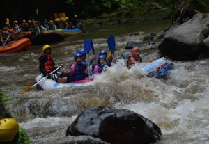 Ayung Rafting Bersama My Adventure Rafting