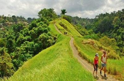 jalan-jalan-bukit-campuhan@baliraftingmurah.com