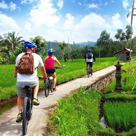 Cycling di Ubud@baliraftingmurah.com