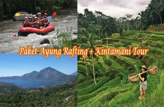 Paket Ayung Rafting + Kintamani Tour